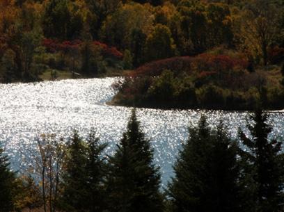 Lake Shimmering